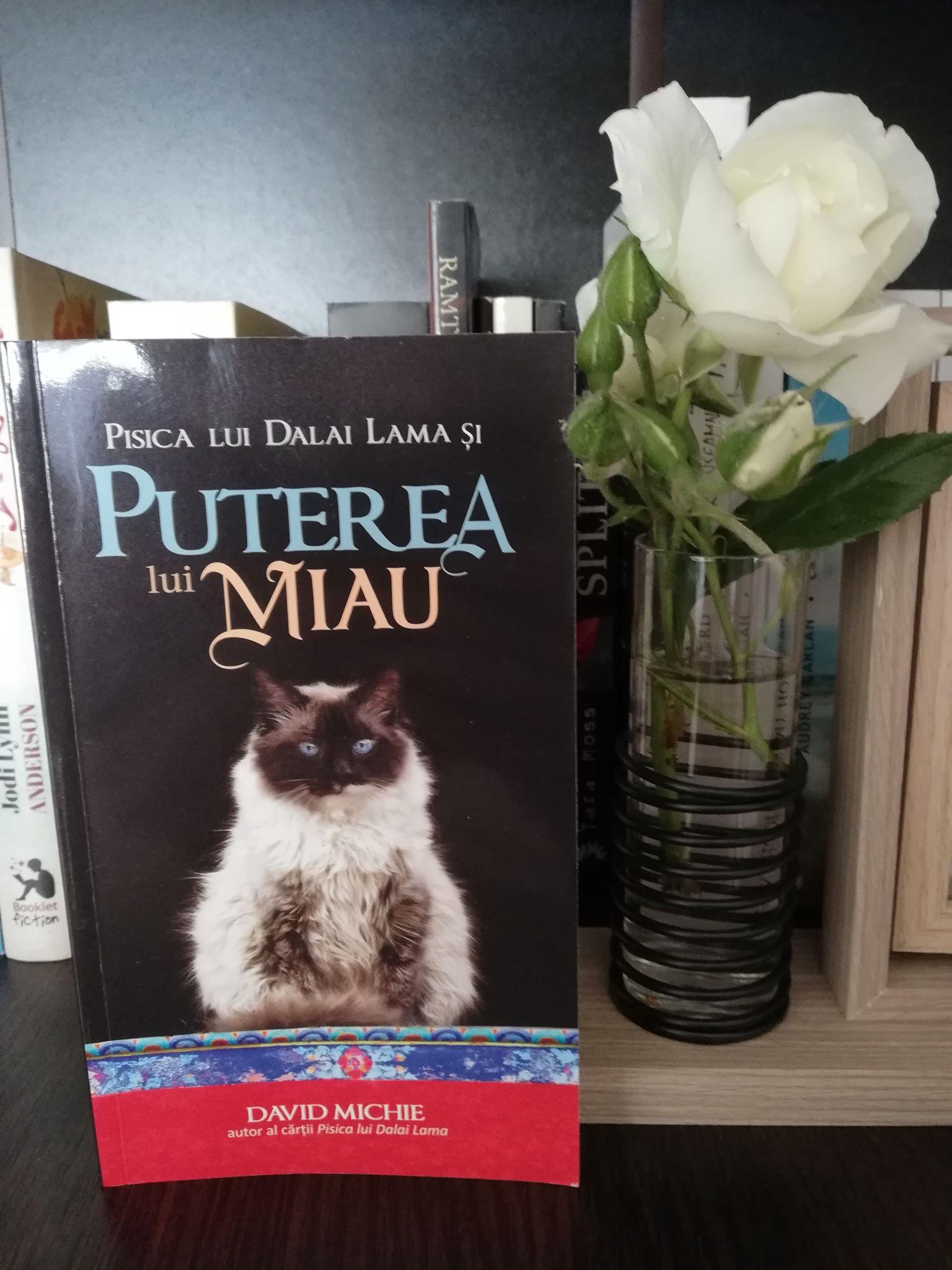 Cartea săptămânii – Puterea lui miau